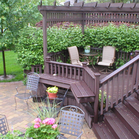 Trex Woodland Brown Stained Cedar Deck and Arbor