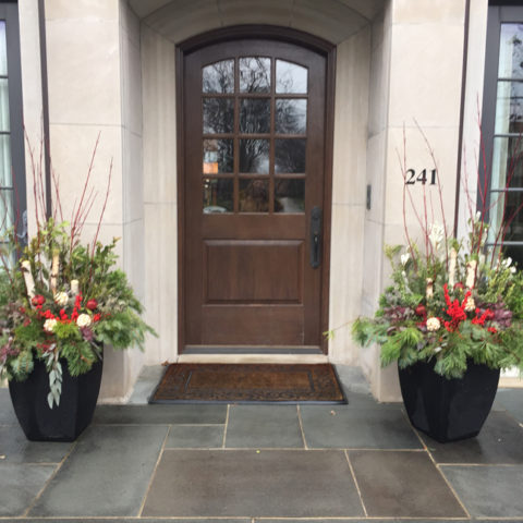 Elevate your entrance with fresh greens and natural accents for a delightful winter display